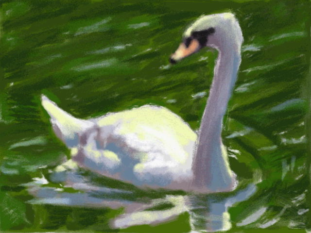 Art Academy DSi: Swan by jennytablina