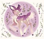 Lavendeer