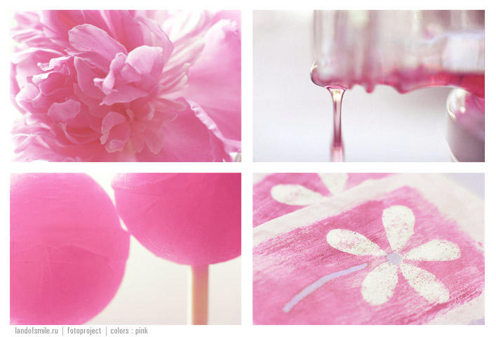 Colors: pink by tanusha