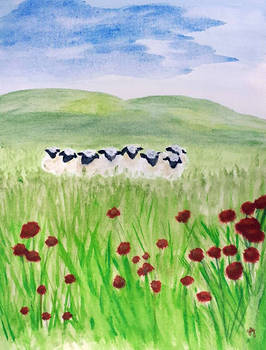 Sheep - Learning Watercolor