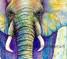 Elephant Colors (close up) by michellefaberart