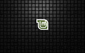 Linux Mint old leather by Wretched--Stare