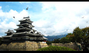 matsumoto castle III by stillshadow
