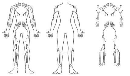 Full Body Tattoo - Human Nervous System
