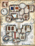 The Frozen Mansion