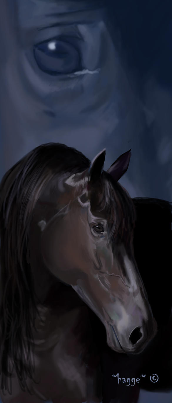 horse bookmarker by Hagge