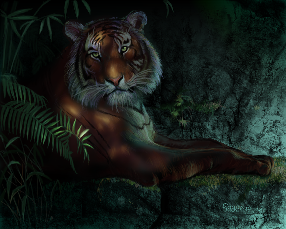 Tyger tyger by Hagge