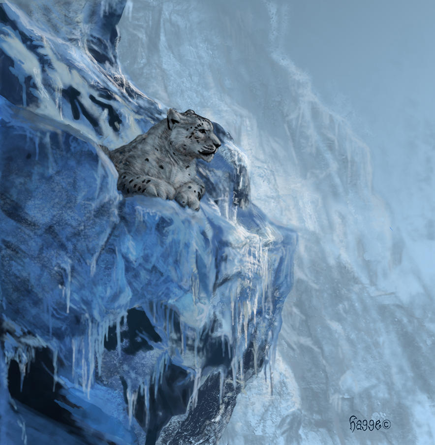 Snow Leopard by Hagge