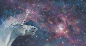 Participant Of The Universe