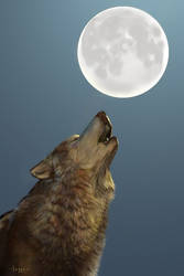 Singing Moon II by Hagge