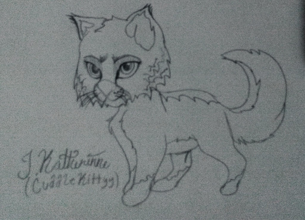 Bobcat  by CuddleKittyy