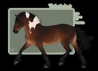 BLS Trinidat by Asilal