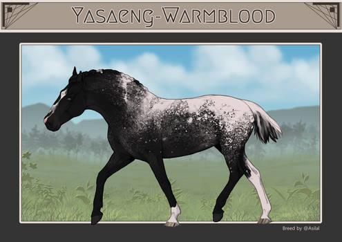 Yasaeng Warmblood #119