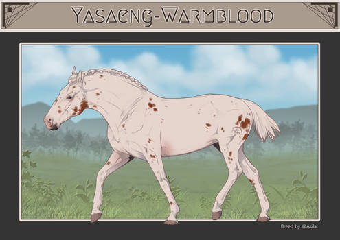 Yasaeng Warmblood #116