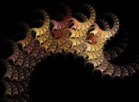 Weekly fractal magic N5
