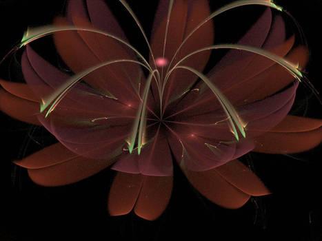 Weekly fractal magic N17