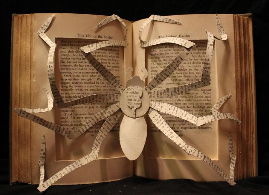 Spider Book Alteration by wetcanvas
