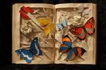 Butterfly Book Sculpture