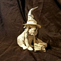 Harry Potter Bulldog