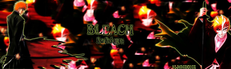 Bleach Sig