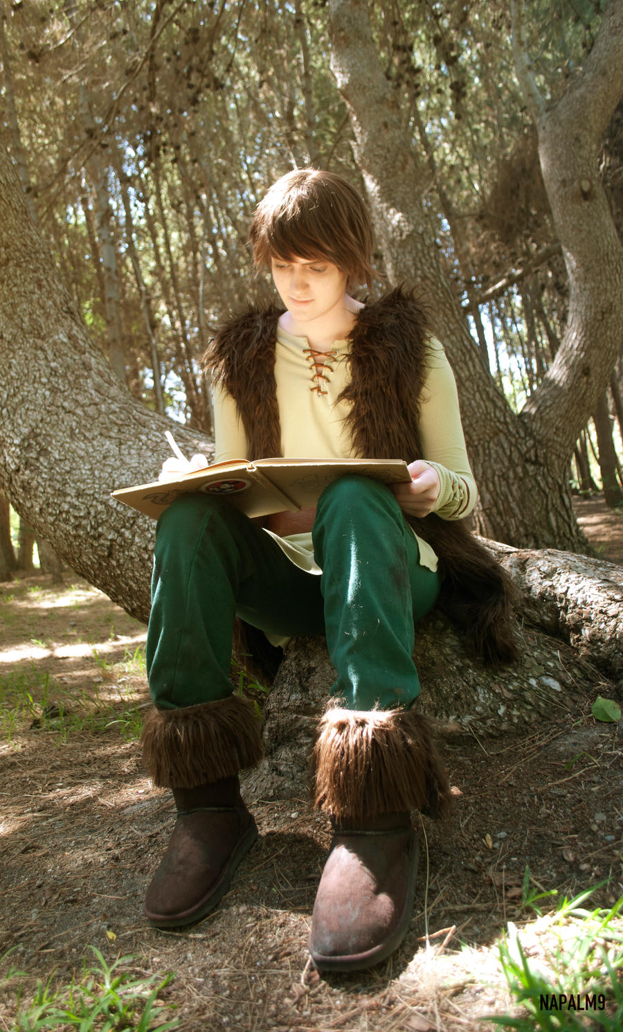 Hiccup Cosplay by Napalm9