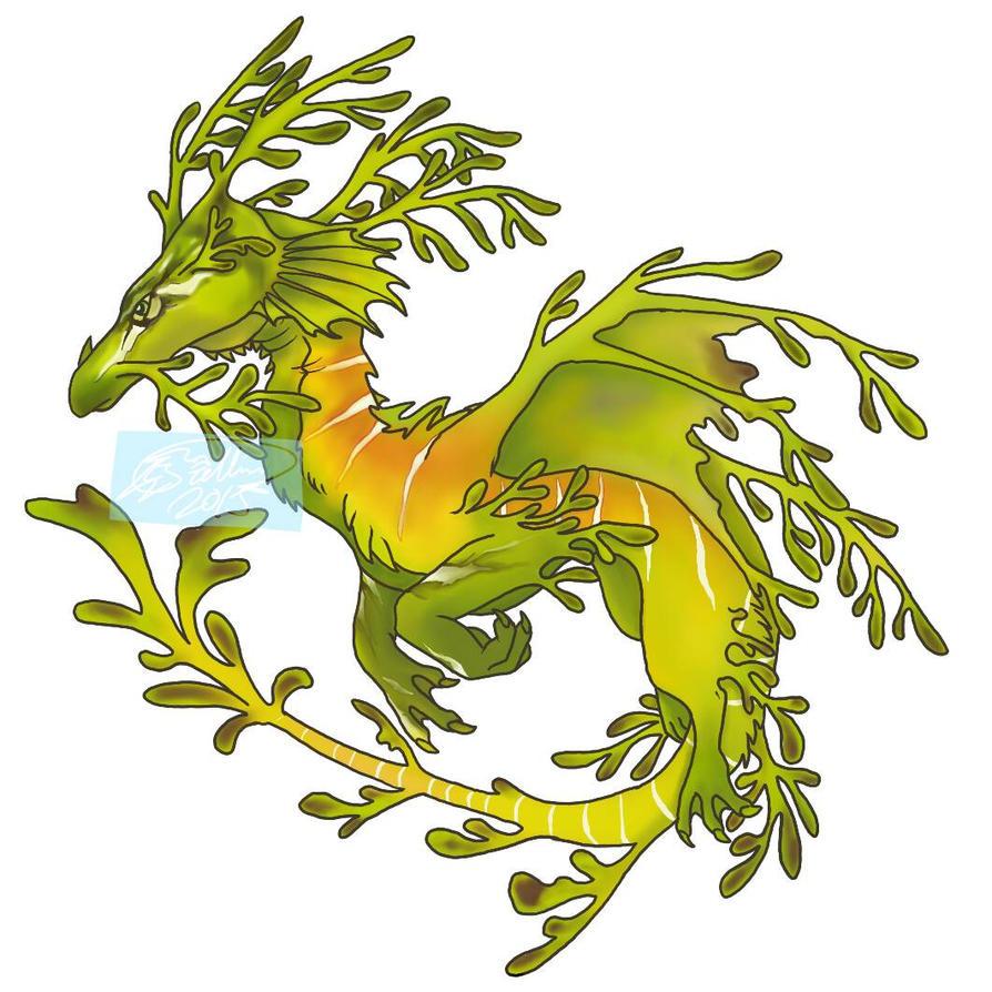 leafy sea dragon by Aireane01