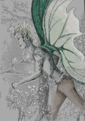 Wood Fairie