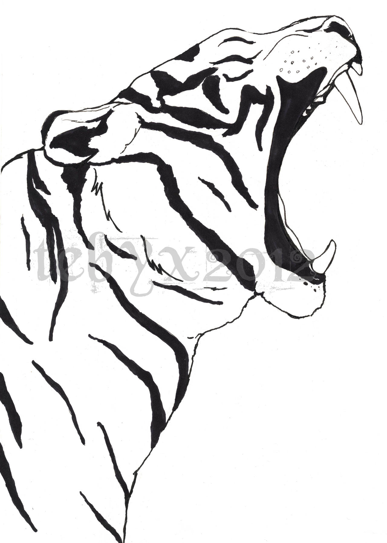Tiger Line Drawing Easy : Tiger lines by tebyx on deviantart