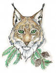 .::Eurasian Lynx::.