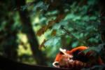 Sleep well little panda