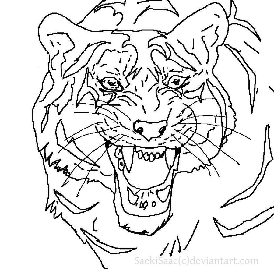 Line Drawing Tiger : Tiger line by saekiisaac on deviantart
