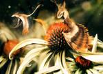 Daisy Dragons
