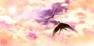 SB: Sky Sounds