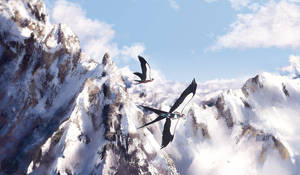 SB: Flight over the Alps