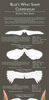 Wing Compendium 2: Atypical Wing Shapes