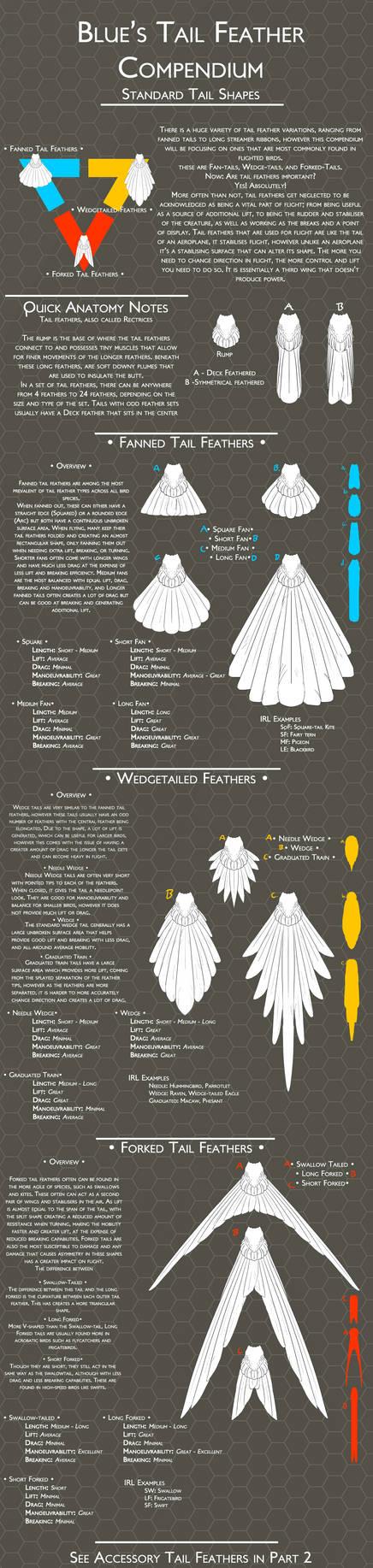 Tail Feather Compendium: Part 1