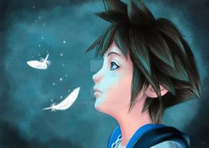 ~ Sora ~ Kingdom hearts ~