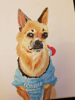 Chihuahua painting present