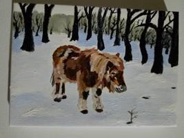 Shetland pony Acrylic Painting