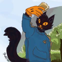 Kevsotomayor cat DTIYS