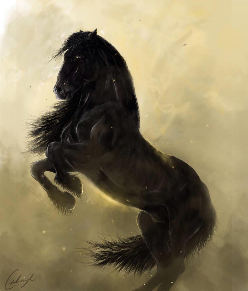Bucephalus by ArcticStudio