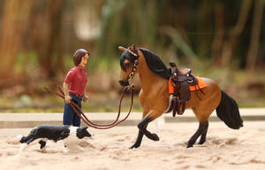 Breyer Stablemate with tack by PhoenixRanch