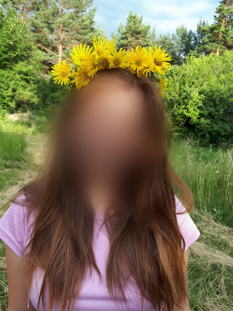 flower crown by sl0venia