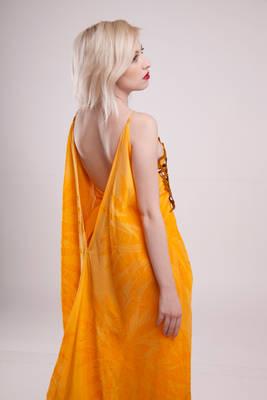 Orange gown III