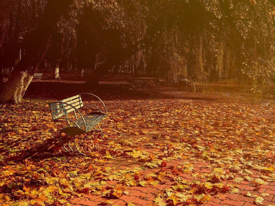 nobody in my autumn by AripiDePlumb