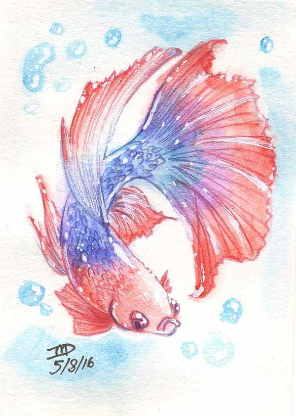 Watercolorfish Resizewdforweb by KitBashCreations