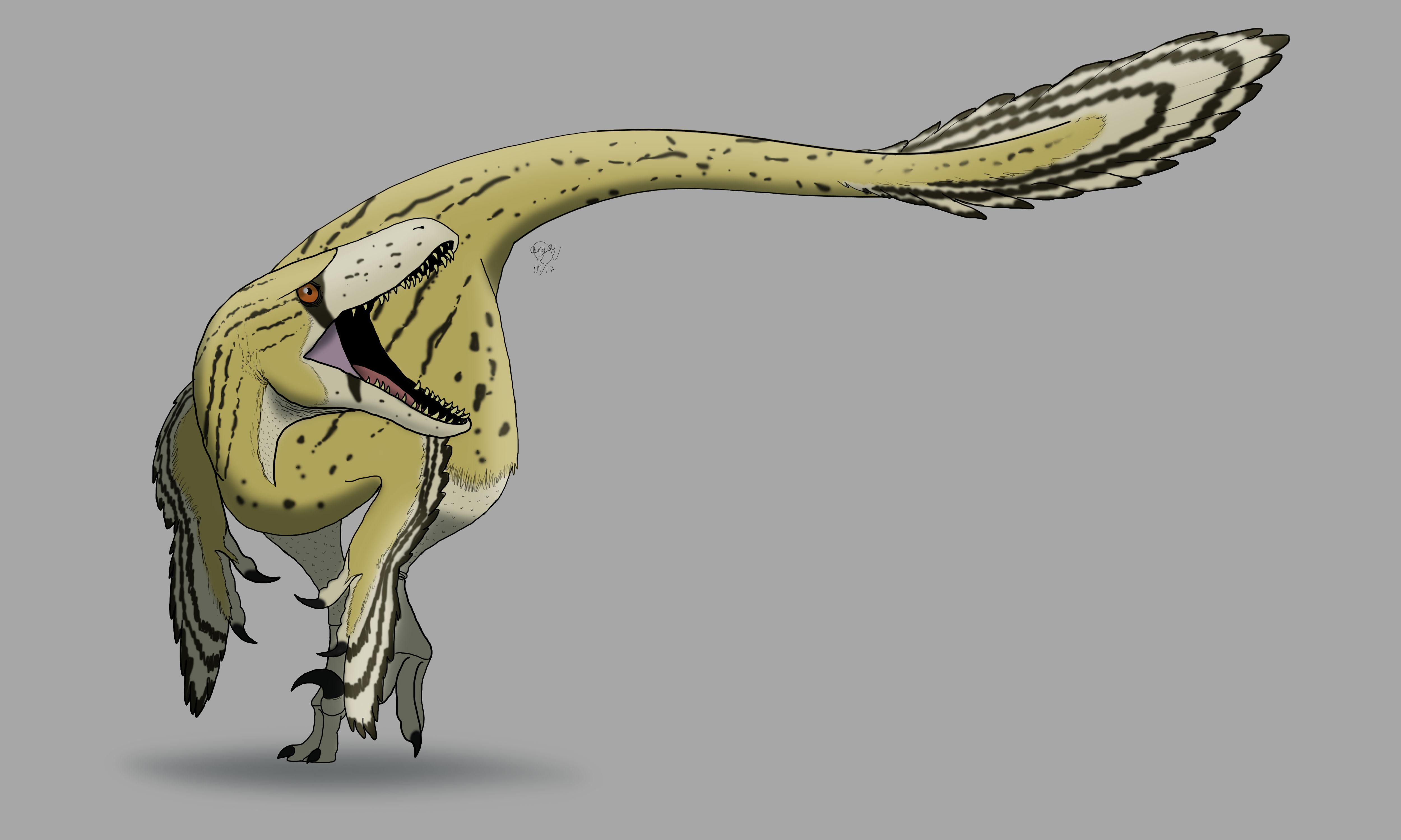 new utahraptor by allotyrannosaurus on deviantart