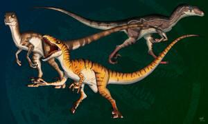 Childhood Raptors