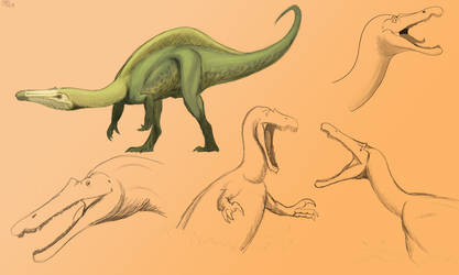 Suchomimus sketches by allotyrannosaurus