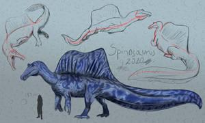 Spinosaurus sketches 2020